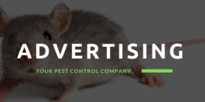5 Ways to Advertise Your Pest Control Business Online